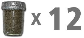 1_Step_Premium_Mushroom_jarx12.png.jpg