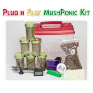 Hydroponic mushroom kit